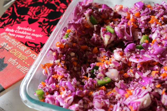 cancer preventing red cabbage cole slaw i batch cooked